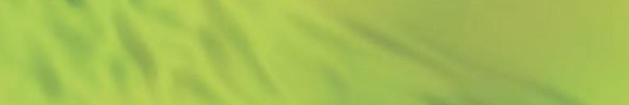 ContentPage_Header_Green.jpg